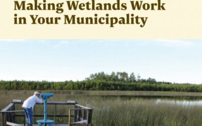 Making Wetlands Work in Your Municipality